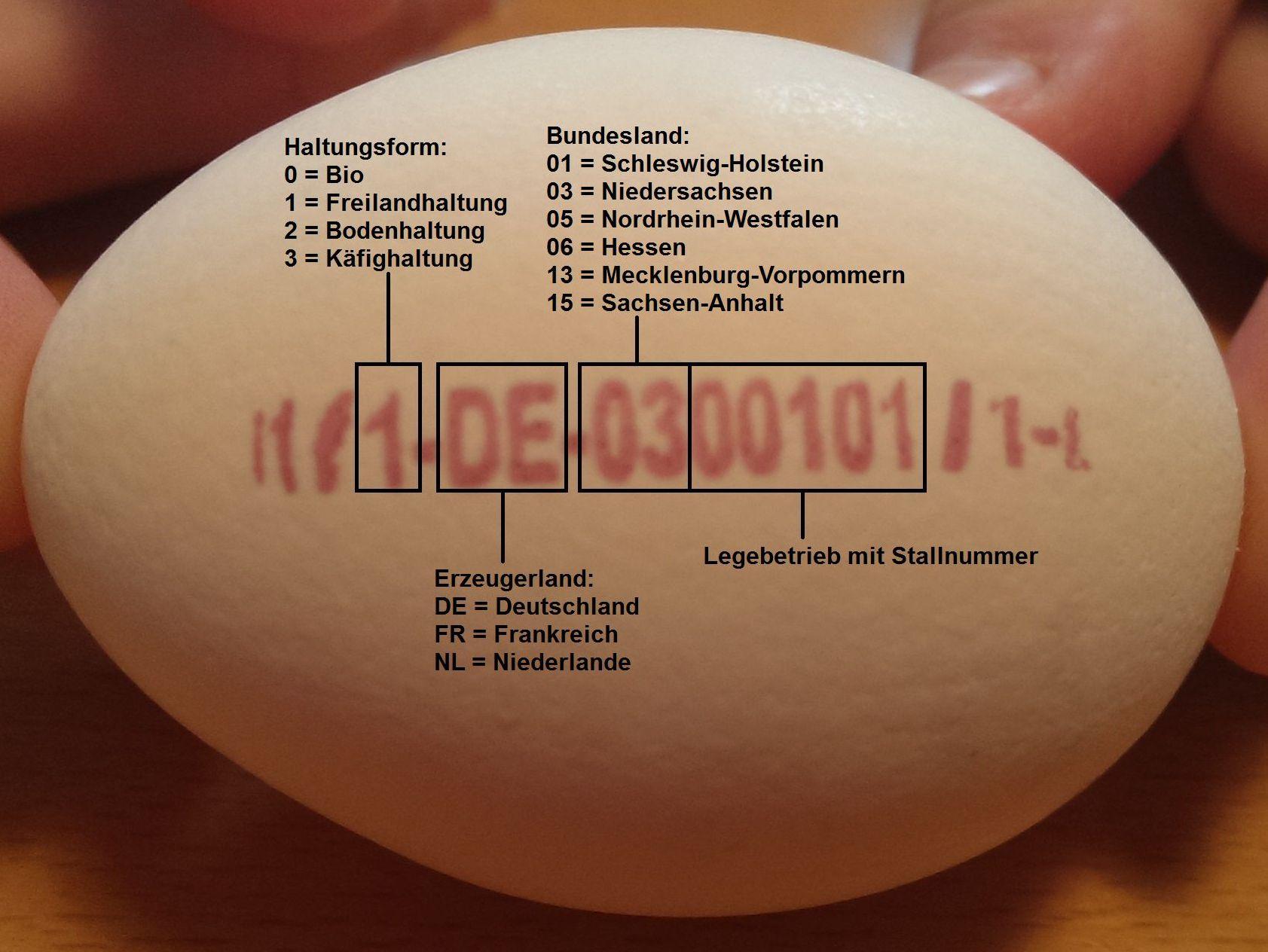 Eier Code Entschlüsseln